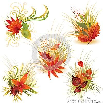 4片秋天五颜六色的叶子被设置的向量