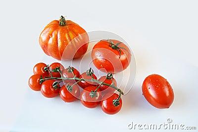4 clases de tomates