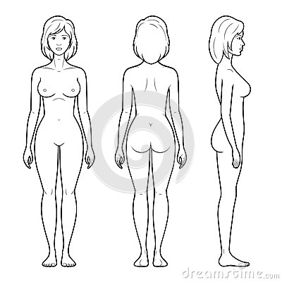 Free 4 Illustration Of Female Figure Stock Image - 42358841