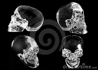 4 views of a crystal skull