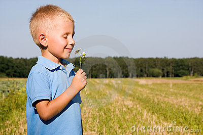 4 years boy smelling daisy flower