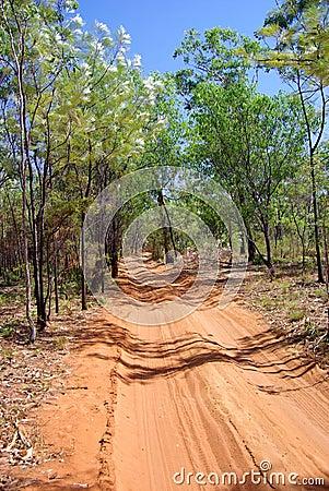 4x4 sand trail tracks