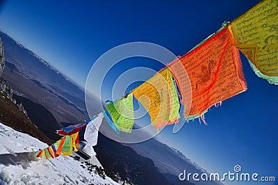 5 color flag