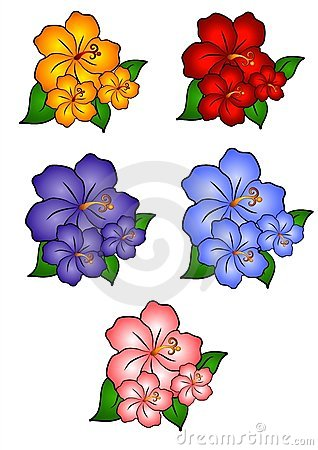 Free 5 Hawaiian Hibiscus Flowers Royalty Free Stock Images - 2292319