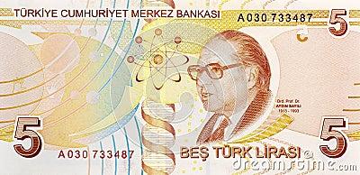 5 Lira banknote back