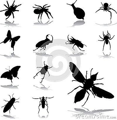 79 owadów ikon ustalonych