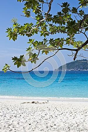 7th similan island