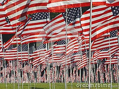 9 11 som minns