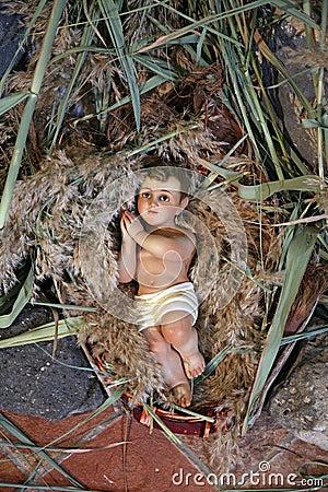 Free A Baby Jesus Figure On Christmas Royalty Free Stock Photos - 28877698