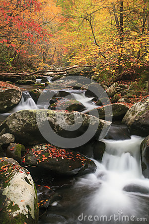 Free A Beautiful Mountain Stream In Smoky Mountain National Park Stock Image - 61963631