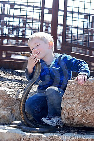 Free A Boy And A Cobra Stock Images - 19174724