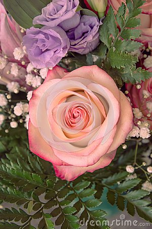 Free A Bucket Of Flowers With Pink And Violet Roses Stock Photo - 103385860