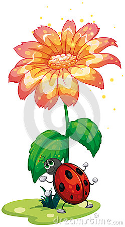 Free A Bug Under The Giant Flower Stock Image - 32330891