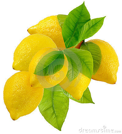 Free A Bunch Of Lemons Stock Photography - 24114072