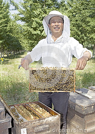 Free A Chinese Senior Man Beekeeper Stock Images - 25418884