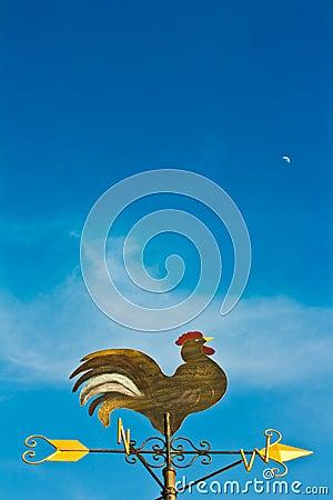 Free A Cockerel Wind Vane Stock Image - 21603501
