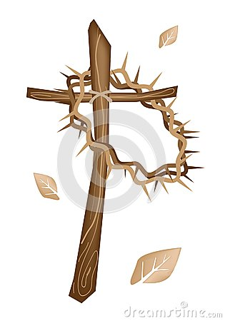 Free A Crown Of Thorns With Fresh Leaves Royalty Free Stock Image - 29165196
