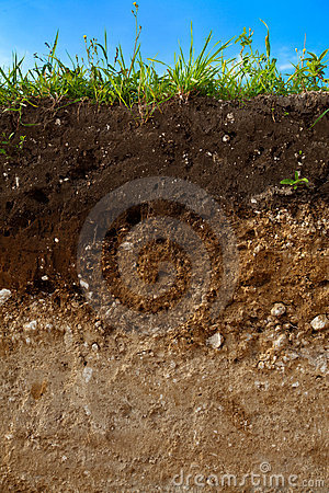 Free A Cut Of Soil Stock Image - 20670581