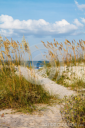 Free A Dune Pathway To The Beach. Royalty Free Stock Photo - 26830685