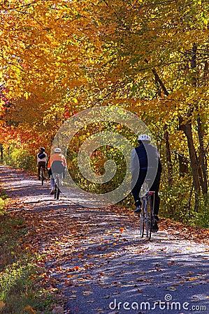 Free A Fall Bike Trip Stock Images - 1942524