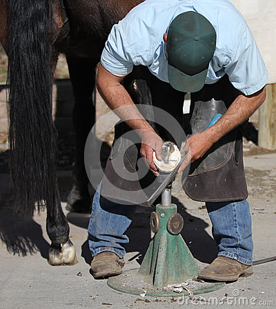 Free A Farrier Trimming A Horse Hoof. Royalty Free Stock Photos - 50794828