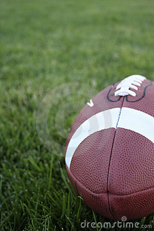 Free A Football On Grass Stock Images - 2933714