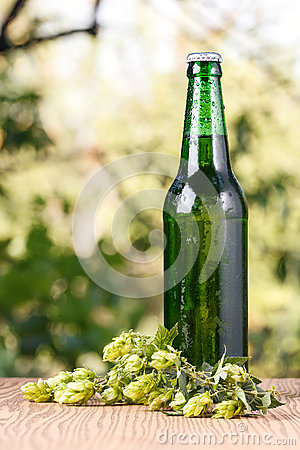 Free A Glass Of Cold Beer Stock Images - 77655434