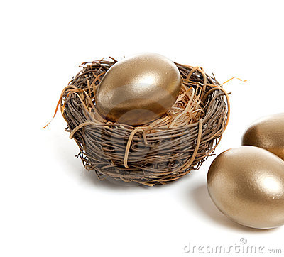 Free A Golden Egg In Nest Stock Image - 10588151