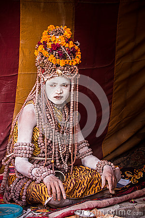 Free A Hindu Priest At The Kumbha Mela In India. Stock Photography - 42428992