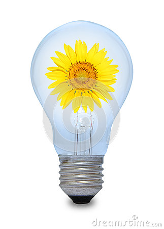 Free A Light Bulb With Sunflower Inside. Royalty Free Stock Images - 24630099