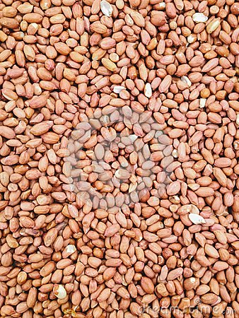 Free A Lot Of Peanut For Background. Royalty Free Stock Photos - 111794798