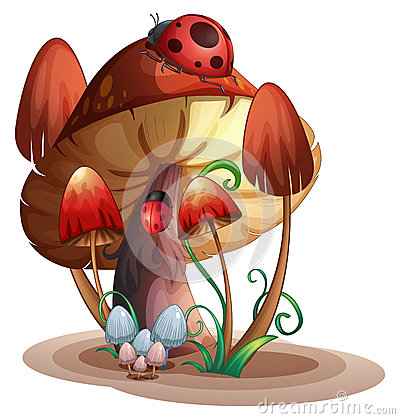 Free A Mushroom With A Ladybug Stock Photos - 44306283