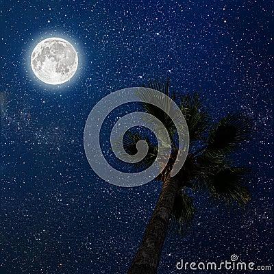 Free A Night Sky Stock Photos - 77851883