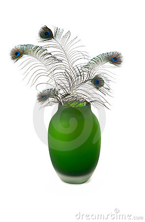 Free A Peacocks Feathers In A Green Vase On White Royalty Free Stock Image - 14291446