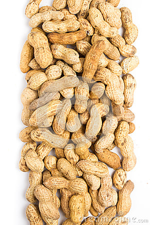 Free A Pile Of Shelled Big Peanuts Closeup On White Background Stock Image - 31204561
