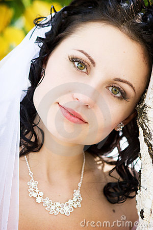 Free A Portrait Of The Thinking Bride Stock Photography - 4088222