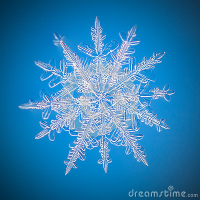 Free A Real Snowflake Macro Lies On A Blue Background Royalty Free Stock Images - 63521679