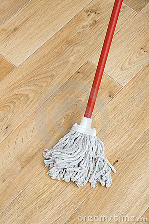 Free A Red Mop Royalty Free Stock Images - 8812759