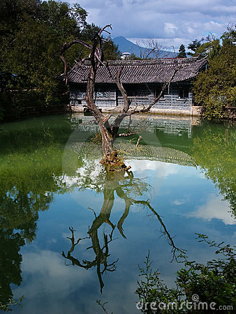 Free A Scenery Park In Lijiang China - A Top Tourist Town 10 Royalty Free Stock Photography - 1663307