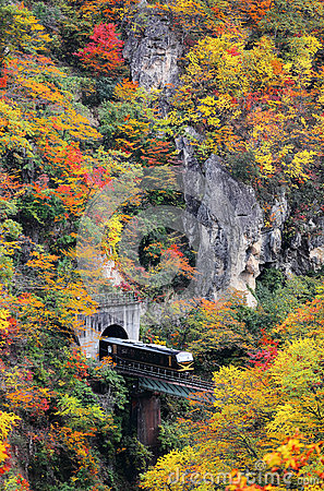 Free A Train Coming Out Of A Tunnel Onto A Bridge Over Naruko Gorge With Colorful Autumn Foliage Stock Photo - 72612610