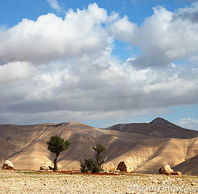 Free A Transparent Day In Judean Desert Stock Images - 18077084