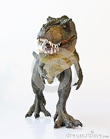 Free A Tyrannosaurus Hunts On A White Background Royalty Free Stock Photo - 28862285