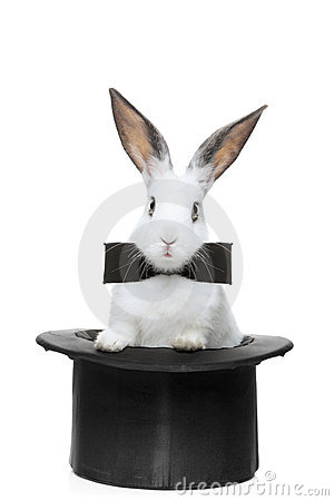 Free A View Of A Rabbit With Bow Tie In A Hat Royalty Free Stock Photos - 14648288