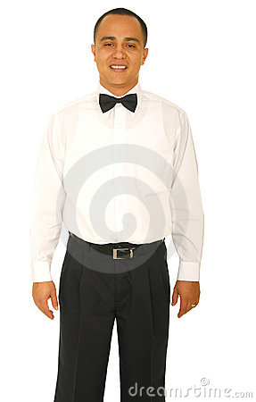 Free A Waiter Royalty Free Stock Image - 5202076
