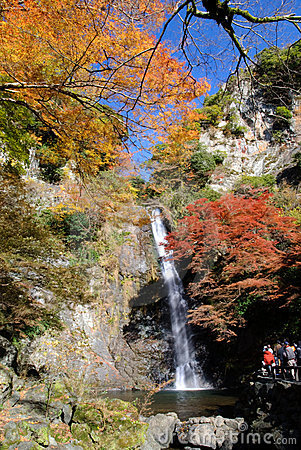 Free A Waterfall With Japanese Maple. Royalty Free Stock Photos - 7905968