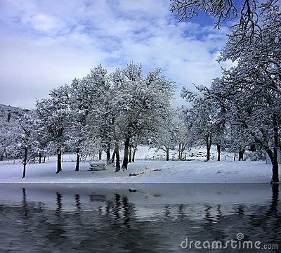 Free A Winter Park Scene Royalty Free Stock Photos - 638568