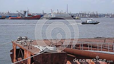 Aak in de haven wordt vastgelegd die stock videobeelden