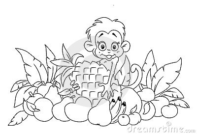 Aap en fruit