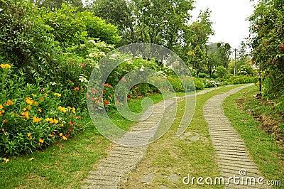 Aardweg met tuin