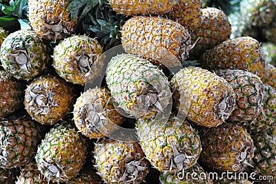 Abacaxis para a venda em Costa-Rica